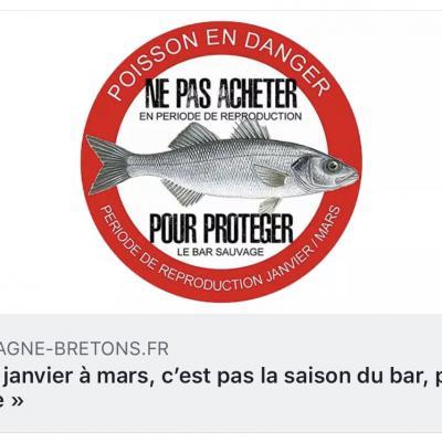 Pêche Responsable