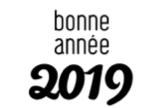 2019 bonne annee
